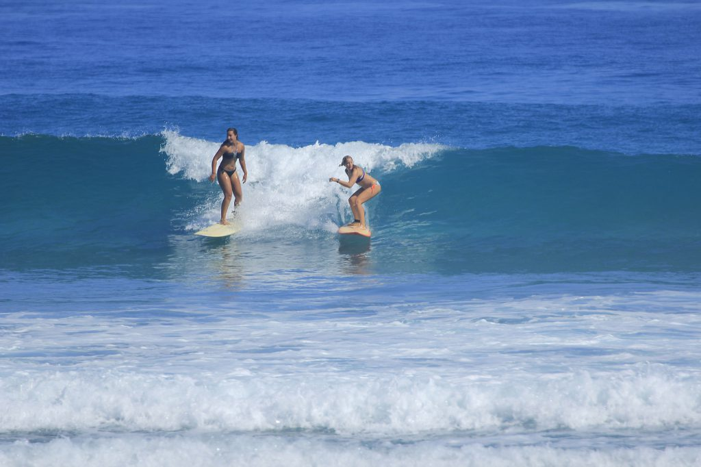 all levels surf camp dominican republic